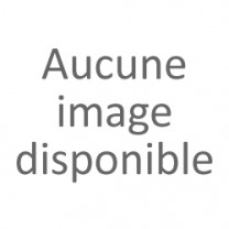 Echafaudage Roulant Alu 1m50 de long